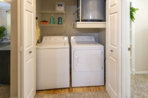 Two Bedroom Apartments for Rent in Northwest Houston, TX - Model Laundry Room (2)